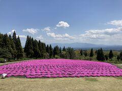 5・8歳連れ、熊本から阿蘇と久住高原ドライブ週末旅行