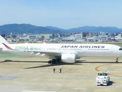 JALタイムセール利用 横浜1泊2日旅【JALサクララウンジから飛行機ウォッチング編】