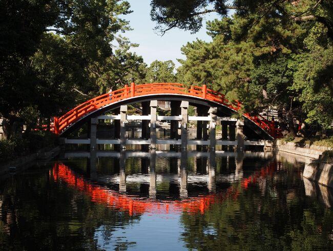 旅の初日は大阪<br />西国札所の葛井寺、御陵印で訪れた古市の応神天皇陵、これで大阪に来た目的はコンプリートしました。<br />近くの道明寺に寄ってからレンタサイクルを返し、住吉大社に移動。<br /><br />