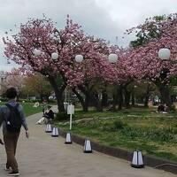 2021年3月高知旅行3 東京で後泊