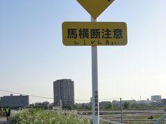 馬横断注意と馬専用横断歩道