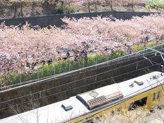 みさきまぐろきっぷで行く早春の三浦半島日帰り旅