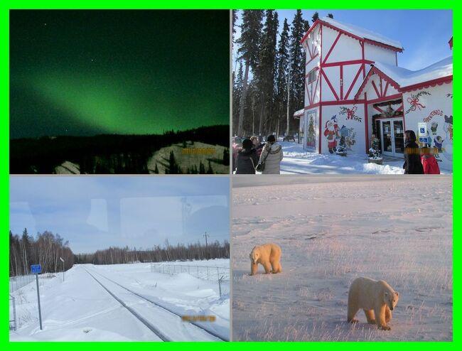アラスカでオーロラ(4)オーロラ・プロローグとアラスカ州立大学北方博物館