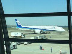 Flight NH475