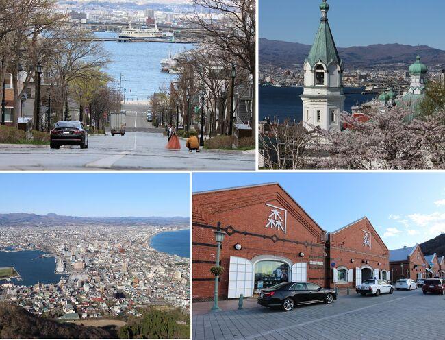 2021春 函館市五稜郭(&北斗市)で満開の桜を堪能②