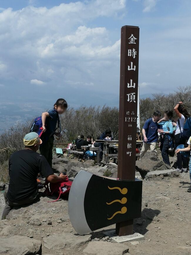 箱根外輪山を歩く2日目<br />しょっぱなから予定を大幅に変更した今回の山行<br />今日の予報は午後から雨<br />ならばさっさと登っちまおう<br /><br />・・・と思っていたんだが