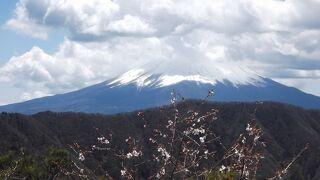 釈迦ヶ岳―富士山北側を歩く