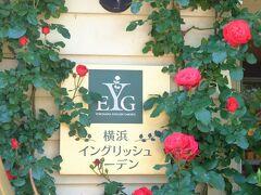 横浜イングリッシュ・ガーデンの春バラ