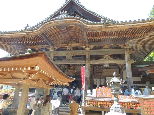 日本最初の厄除け霊場岡寺は飛鳥の東、山の中腹にあり、坂を上ると重要文化財に指定されている<br />鮮やかな朱色をした仁王門があらわれる。本堂などはその奥、石垣の上に建ちならぶ。<br />本尊、如意輪観音座像は塑像(土で造られた仏様)で、弘法大師の作と伝えられ、塑像としてはわが国最大の仏像である。また本尊は厄除け観音で知られ、古来より信仰を集めている。<br />4月中旬からはシャクナゲの花約3000株が咲き誇り、桜、サツキ、秋には紅葉も美しい。さまざまな伝説を残した名僧、義淵僧正が創建した。