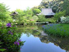 関西花の寺  !  長岳寺
