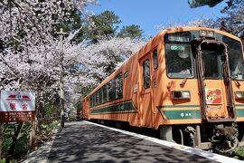 あおもりの春はやさしい。桜のトンネルを抜けたら味噌おでん~東北鉄旅③