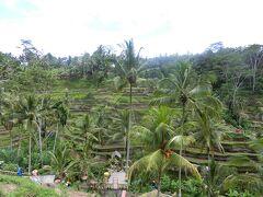 バリ島の自然に癒されたい 3日目