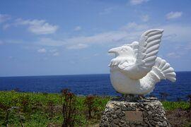 2021ANA修行1-2(沖縄本島北端とヤンバルクイナ)