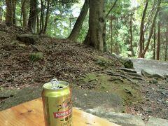 久しぶりの春日山原始林を歩く
