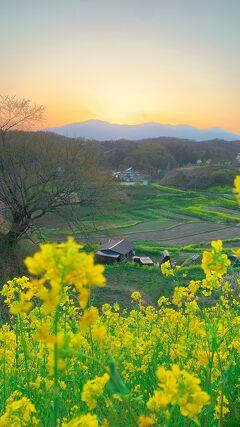 名古屋から東北、温泉巡りツアー6日目