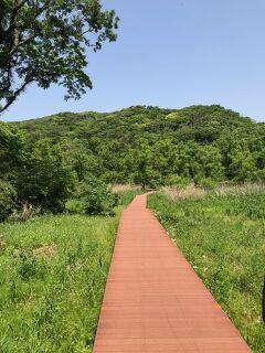 小網代の森を歩く