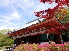 クロスカブで西国観音巡り 4日目 橿原神宮から第6番 南法華寺へ行きました。
