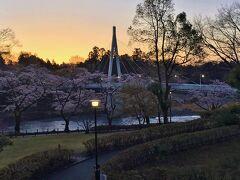 東京の奥座敷 青梅の桜を堪能 【簡保の宿 青梅】