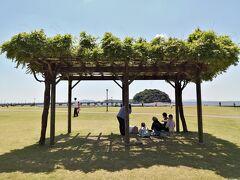 GWに蒲郡へ…竹島ぐるっと一周してきました