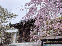 古くからの友人と京都巡り「京都大原三千院」