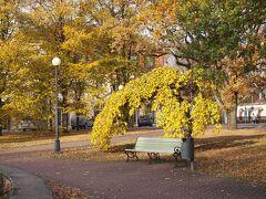 秋のバルト三国美しき古都と城を訪ねてNo.14<歴史と海と太陽の町エストニアのパルヌ>