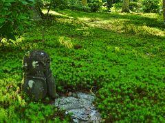 京のお散歩  4  圓光寺~岡崎神社~平安神宮