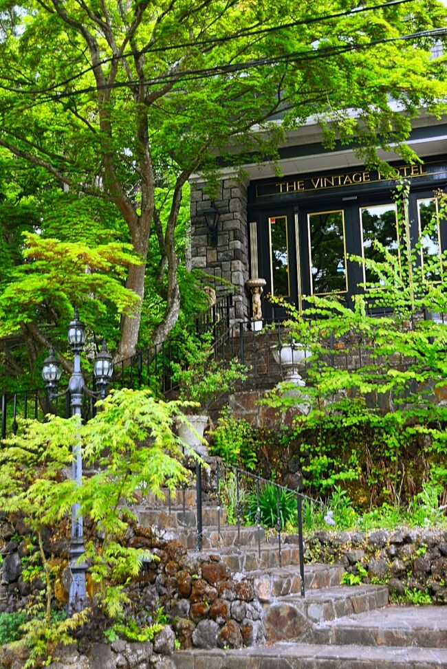 5月、緊急事態宣言下の東京。GWの旅もキャンセルしてホントに張り合いのない毎日...<br />そんな中、前から気になっていた軽井沢の小さなマナーハウスRuze Villaを4トラ友のマリアンヌさんが奇跡的に週末に予約出来たと聞いて、これは是非ともご一緒させて頂こうと便乗させてもらった。このRuze Villaは5室しかないためほとんど満室状態。これはラッキー♪<br />大手振って旅に出かけるには至らないが、人の多い首都圏にいるよりもずっといいのではないか?と思うほど人のいない軽井沢を愉しんできた。<br /><br />新緑&春薔薇を期待したが、残念ながら薔薇は蕾にもなっていない状態であった(爆)今年はお花はどこも早いはずだがなぁ?そりゃ避暑地の軽井沢、東京より1ヵ月以上季節は遅れているように感じた。<br />軽井沢なんて久しぶり過ぎて笑っちゃう( ;∀;)そんな寒かったっけ??と思い出せない(苦笑)<br /><br />まぁとにかく期待通りの素敵なヴィラで過ごす時間は非現実的で優雅な気分になれた♪<br />マリアンヌさんとずっとしゃべってばっかりだったな(笑)楽しい時間をありがとう~またつまらない日常を頑張れるよ!!!<br /><br />