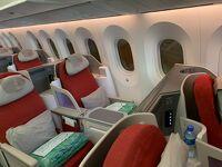 世界一周旅行:エチオピア航空ビジネスクラス ブラジル(サンパウロ)~エチオピア(アディスアベバ)