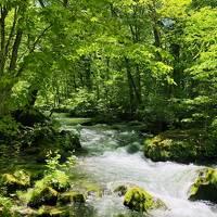 女ひとり1泊2日で新緑の青い森★ドラクエウォークおみやげ回収の旅 in青森