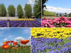 2021.5 北の春を彩る花畑 ファーム富田 中富良野町