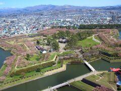【桜を見に行こう】函館・弘前に行ってきた。1日目~2日目朝まで