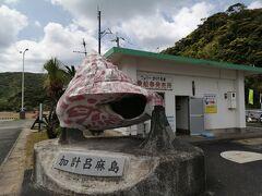 のんびり景色を楽しむ奄美 ③加計呂麻島