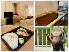 徒然なるままに・・久々の甲府 定宿ホテル談露館~遊亀動物園-アジアゾウのテル