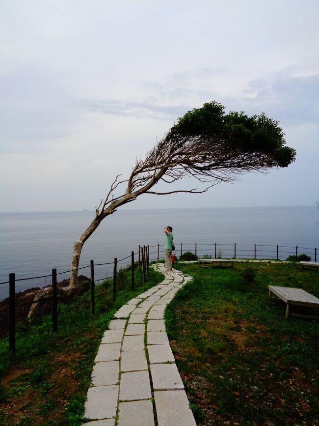 能登半島の先っぽに、日本三大聖域のひとつ「青の洞窟」があった