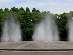 2021初夏、庄内緑地公園のバラ(1/10):6月6日(1):ノウゼンカズラ、キンシバイ、バラ園、ショッキング・ブルー