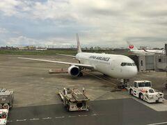 Flight JL315