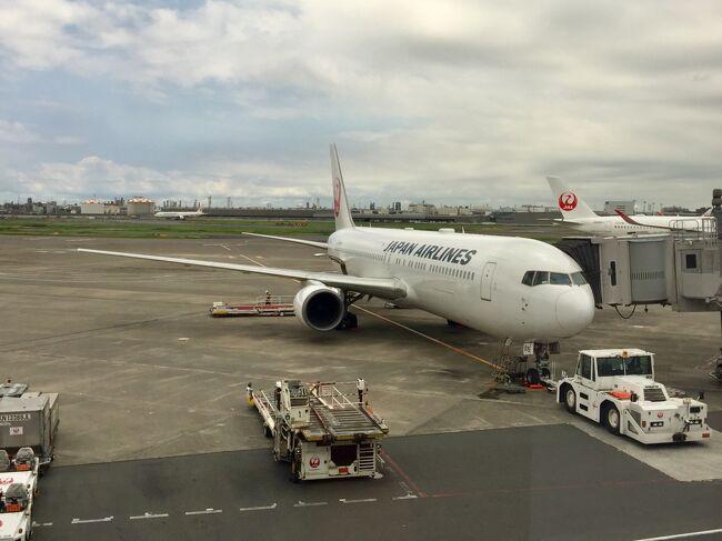 本当はA350に乗るために予約した今回の航空券…しかし機材がB767-300に変更されガッカリ。ただ羽田から福岡まで往復14800円と安価で、変更後もちゃんと希望通り窓側の席が確保されていたためキャンセルはせずに乗り慣れた機材でのフライトを楽しむことにしました。お天気が良くない割には穏やかなフライトで、ドリンクやキャンディーをいただきながらゆったり。そして乗務員さんのおかげで機内では退屈せずに過ごせました。機材変更はちょっと残念でしたが、こんな低価格でも上品質なサービスだったので大満足です^^