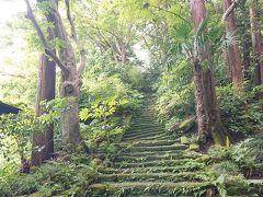 鎌倉に瑞泉寺の『苔の階段』とアジサイを観賞のため観光。