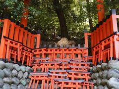 20210610-3 京都 明るい時間に来るのは随分久しぶりかも。伏見稲荷大社にお参りを。