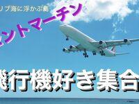 飛行機好き集合!セントマーチンンと終日航海日とフォートローダーデールへ戻ります!