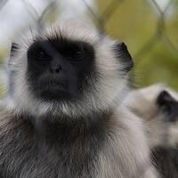 ①ときわ動物園3Days ~動物園編~