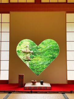 青もみじと苔の魅力にようやく気付いた2021年☆ 新緑を求めてmy carで巡る京都編