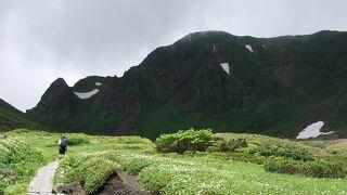梅雨の晴れ間に北東北1 チングルマ真っ盛りの秋田駒ヶ岳