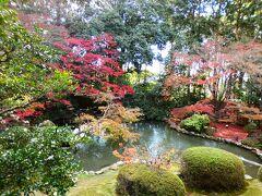 京都 山科 小野 隨心院境内(Zuishin-in Temple, Ono, Yamashina, Kyoto, JP)