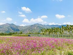 旅情あふれる旗山と美濃(2)
