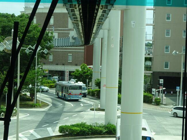 用事があって川崎に出掛けました。<br />せっかくの機会なので、そのあとお休みをとって神奈川県内を巡ってみることにしました。<br /><br />と言いつつ、朝からずっと川崎と鶴見の間の狭い地域を行ったり来たり。<br />それはそれで楽しかったのですが、ここからようやくこの地域を抜け出して、西の方に向かいます。<br /><br />次に乗りに行ったのは大船駅を起点としている湘南モノレール。現在のところ国内で3つだけの懸垂式モノレール。特にこの路線は起伏の多い区間をずんずん進むので、まるでアトラクションのように楽しい路線です。<br />この路線にも何度か乗ったことがあるはずなのですが、それがいつどういう目的で乗ったのかがあまり記憶にありません。今回、改めてガッツリ乗ってみました。<br /><br />そして、終点の江ノ島からは江ノ電で藤沢へ。<br />江ノ電と言えば鎌倉と江ノ島の間の山あり海沿いありの区間がよく取り上げられますが、今回乗った区間はどちらかというとふつうの住宅地の中を行きます。でもそこは江ノ電で、カーブの多い区間をくねくねと、やはりアトラクションのような路線ですね。<br /><br />結果的に、大船から藤沢。東海道線ならたったの1駅区間(笑)