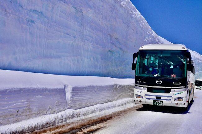 2021年GW4日目AM:アルペンルート50周年!夢叶う!立山黒部アルペンルート『雪の大谷』14m体感しに行く:4泊5日北陸白馬旅行:家族で