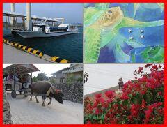 沖縄離島巡り2015(9)海を渡って竹富島へ・星砂の浜&水牛車観光。石垣島に戻って石垣牛♪