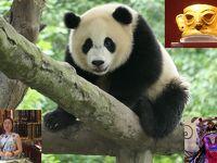 【9】熊猫楽園のパンダ、金沙遺跡の黄金マスク、変面、蔵族街、美人2