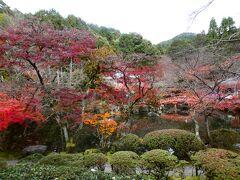 京都 醍醐 醍醐寺 大伝法院(Daidenbo-in, Daigoji Temple, Daigo, Kyoto, JP)